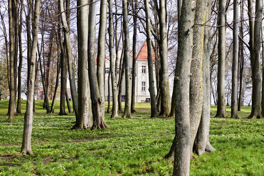 Pałac Pacółtowo_01